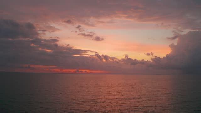 vidéos et rushes de vue aérienne des palmiers et des cocotiers sur la plage, goa, inde. - arbre tropical