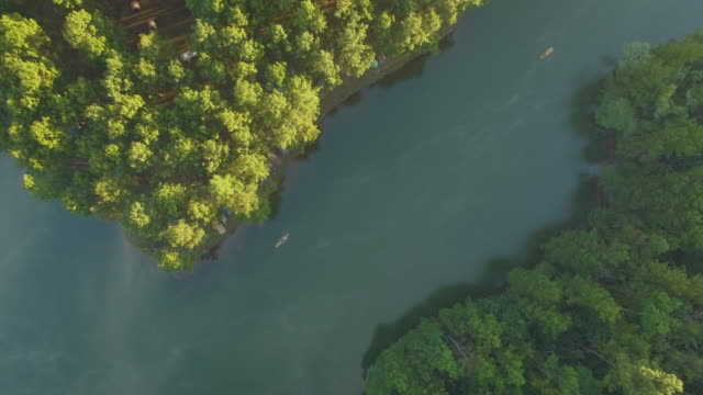 Aerial view of  Pang Oung, Pine forest in Mae Hong Son video