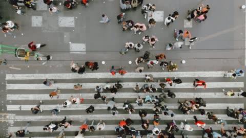 vista aerea dei pedoni che attraversano il traffico affollato. - people video stock e b–roll