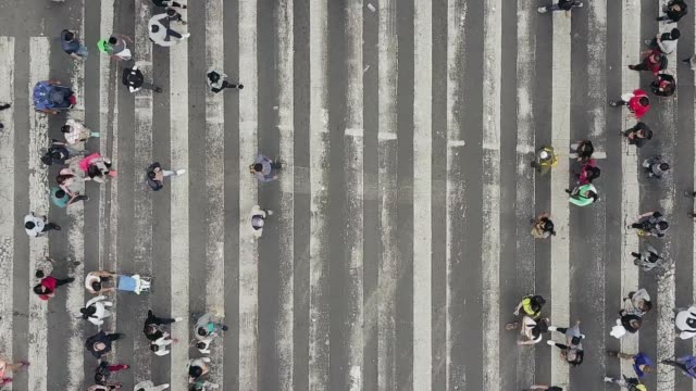 vídeos de stock e filmes b-roll de aerial view of pedestrians walking across with crowded traffic - encruzilhada