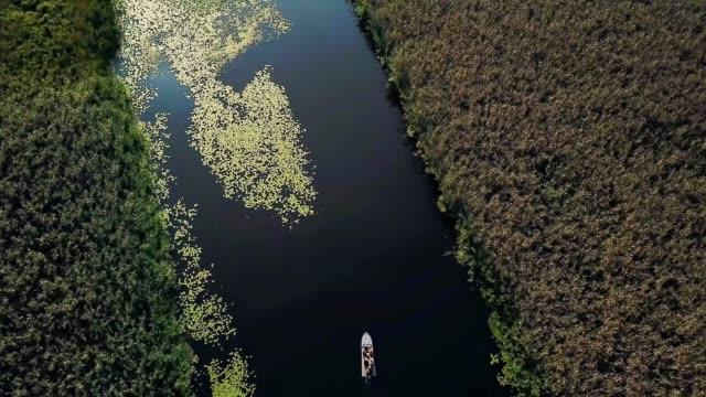 aerial view of people on the motorboat - дикая местность стоковые видео и кадры b-roll