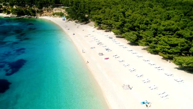 Aerial view of people swimming and sunbathing on sandy beach video