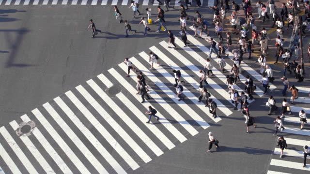 東京・渋谷交差点で長い影を持つ人々のslo mo航空写真 - 交差点点の映像素材/bロール