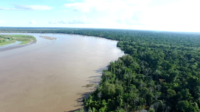 aerial view of Peruvian Amazon and Jungle video