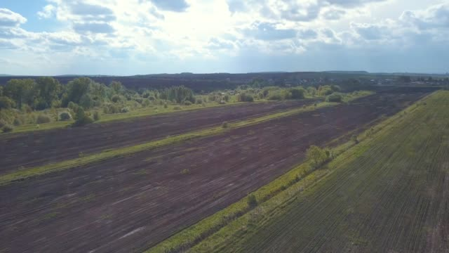 Aerial view of ploughed and sown fields near the village or farmers houses in sunny summer day against blue cloudy sky. Clip. Beautiful view of countryside landscape