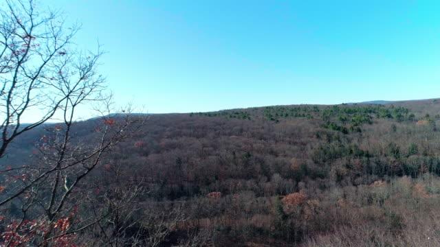 veduta aerea dei monti pocono, appalachi, nella tarda giornata di sole autunnale - hickory run video stock e b–roll