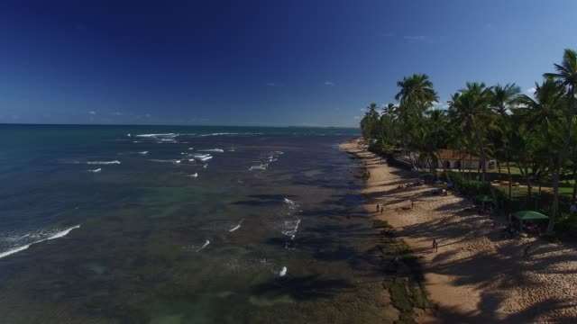 vídeos de stock, filmes e b-roll de vista aérea da praia do forte, na bahia, brasil - nordeste