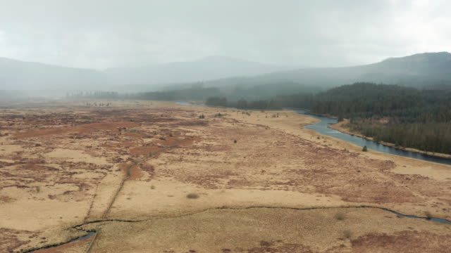 Aerial view of remote rural Scotland as rain approaches in the background 4K video captured by a drone of rural Dumfries and Galloway in south west Scotland. The video was captured on an overcast spring morning just before a heavy shower of rain. After a harsh winter the grass and bracken has wilted. Many parts of this region are used for forestry and a pine forest can be seen on the other side of a river. Fast descending crane shot. galloway scotland stock videos & royalty-free footage