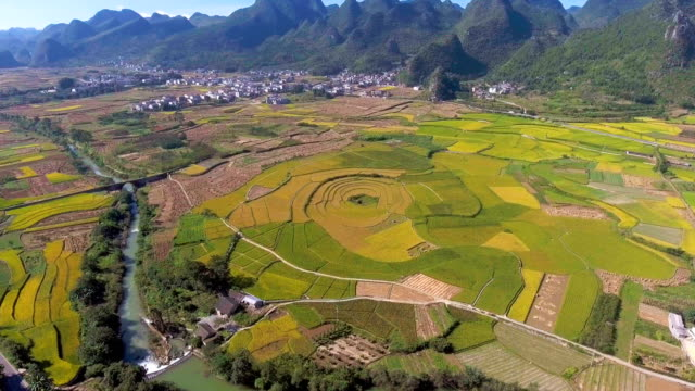 Aerial view of Rice Paddy and Traditional Chinese Village in Green Valley, Yunnan Province, China video