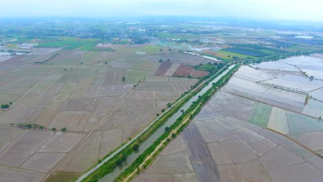 luftbild von reisfeld und wasserlauf im ländlichen raum - bewässerungsanlage stock-videos und b-roll-filmmaterial