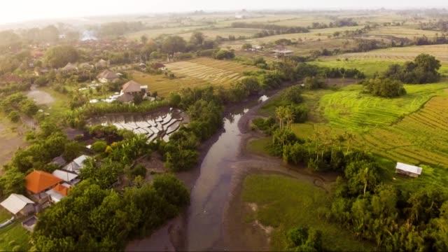 エコー ビーチ バリ、インドネシアに近い棚田の空撮 - インドネシア点の映像素材/bロール