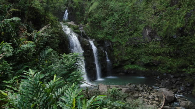 Aerial view of river and waterfall in forest jungle Nature experiences in Hawaii perfection stock videos & royalty-free footage