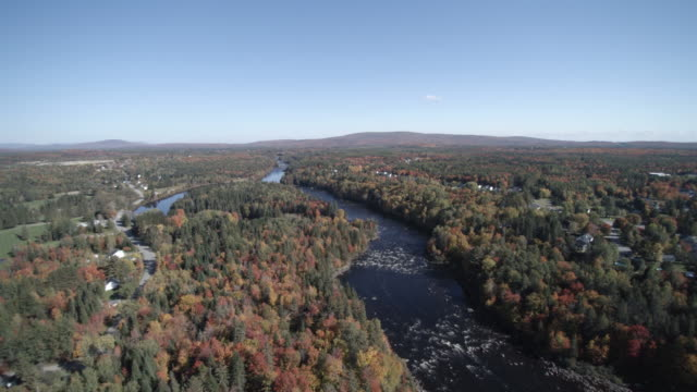 Aerial View of River in Forest Nature, Quebec, Canada video