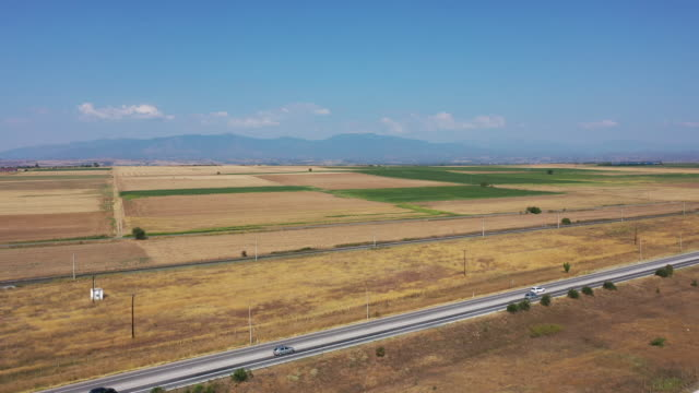 Aerial view of road and fields