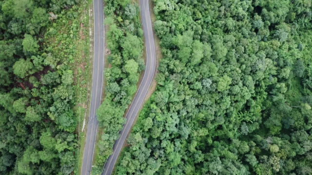 Aerial view of road in the forest and car driving , crossroad