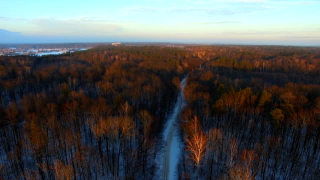 Aerial view of road through the woods in winter video