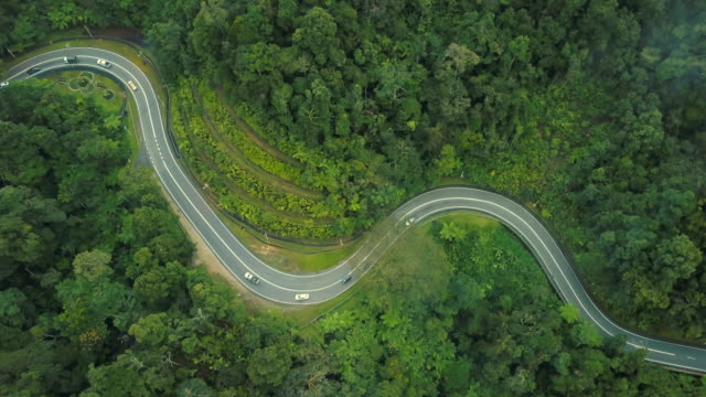 aerial view of road trip in forest to cameron highland, brinchang, malaysia - strada transitabile video stock e b–roll