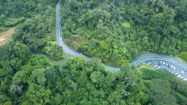 luftaufnahme des road-trip im wald zu cameron highland, brinchang, malaysia - tropischer baum stock-videos und b-roll-filmmaterial
