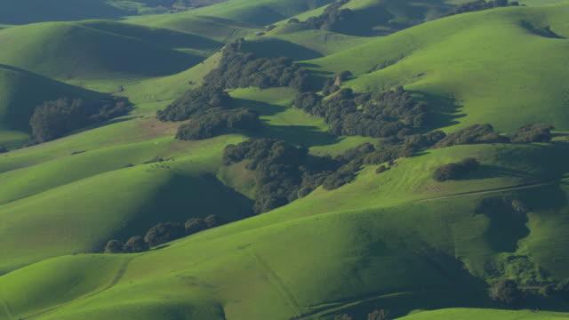 vista aerea delle dolci colline verdi nel nord della california - paesaggio collinare video stock e b–roll