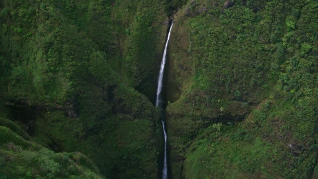 Aerial view of Sacred Falls. Oahu, Hawaii circa-2018.  Aerial view of Sacred Falls.  Shot with Cineflex and RED Epic-W Helium. oahu stock videos & royalty-free footage