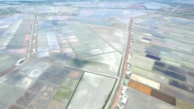 Aerial view of salt farming Naklua in the coastal, Thailand video
