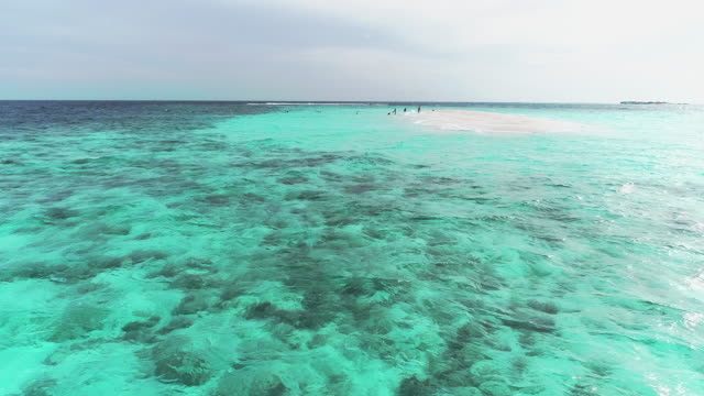 aerial view of sea side beach. video of beauty nature landscape with tropical beach. top view aerial video of beauty nature landscape with tropical beach in cancun, mexico. caribbean sea, coral reef, top view - sardegna video stock e b–roll