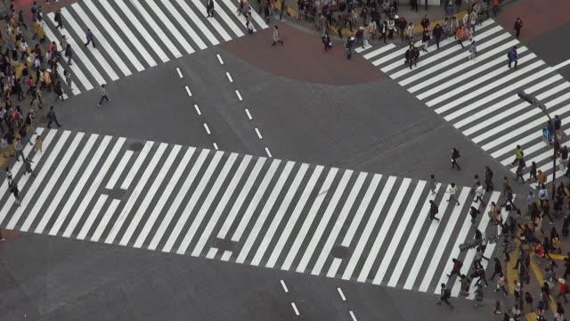 luftbild von shibuya-kreuzung am tag, tokio - überweg warnschild stock-videos und b-roll-filmmaterial