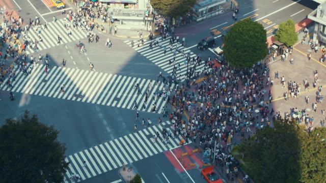 在日本,在東京澀谷十字路口的鳥瞰圖 - 澀谷交叉點 個影片檔及 b 捲影像