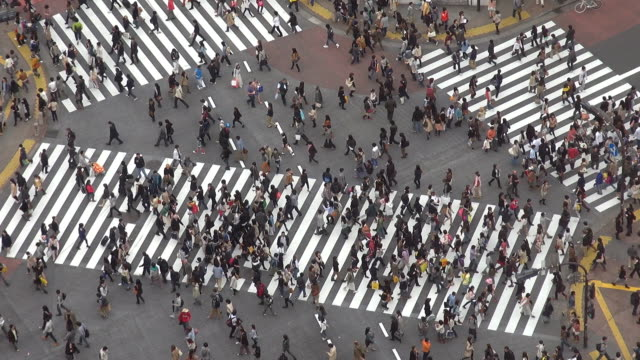 luftbild von shibuya fußgängerüberweg am tag, tokio - überweg warnschild stock-videos und b-roll-filmmaterial