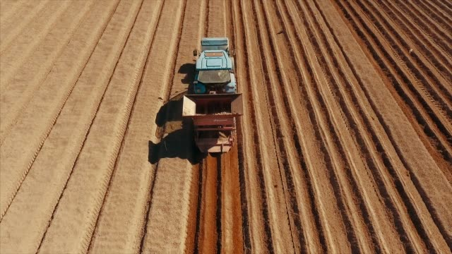 Aerial view of sowing tractor at agriculture field Video series shot with drone of tractors plowing and sowing potato field in the middle size farm during early spring. sowing stock videos & royalty-free footage