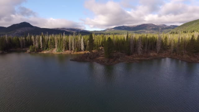 aerial view of sparks lake, oregon - inarcare la schiena video stock e b–roll