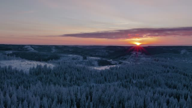 Aerial view of sunset over snow covered forest in winter video