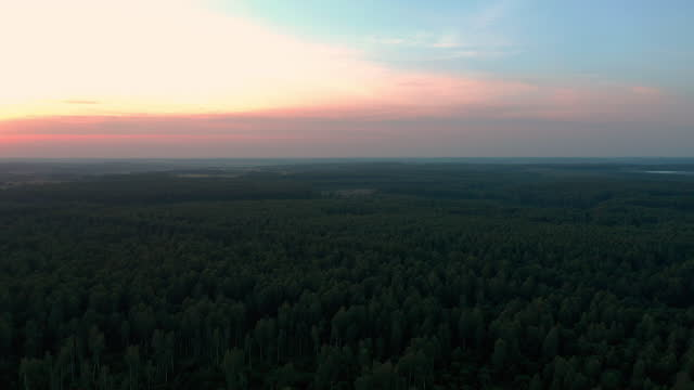 Aerial view of sunset sky over forest in dusk Aerial view of sunset sky over forest in dusk. Camera is going down low lighting stock videos & royalty-free footage