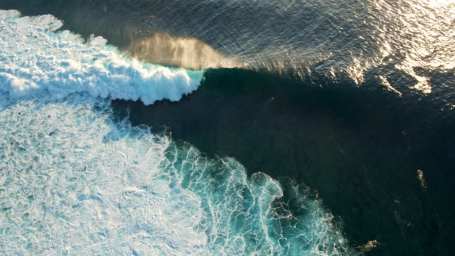 Aerial View of Surfer Riding Wave video