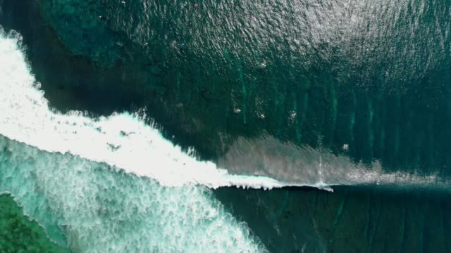 Aerial view of surfing at big waves. Blue waves in ocean and surfers Aerial view of surfing at big waves. Blue waves in ocean and surfers oahu stock videos & royalty-free footage