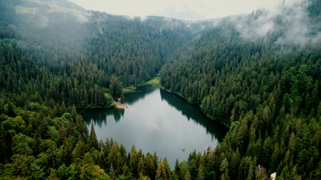 aerial view of synevir lake in the  carpathian mountains in ukraine - ukraina filmów i materiałów b-roll