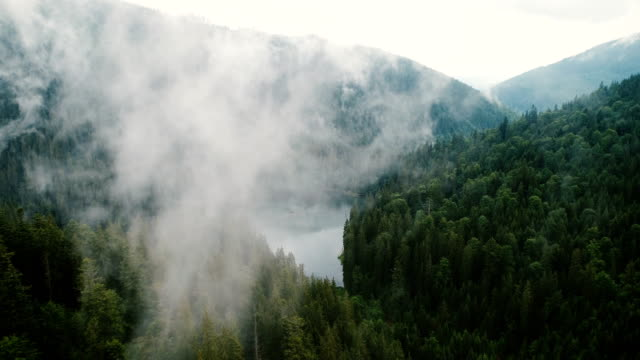 aerial view of synevir lake in the  carpathian mountains in ukraine - nebbia video stock e b–roll