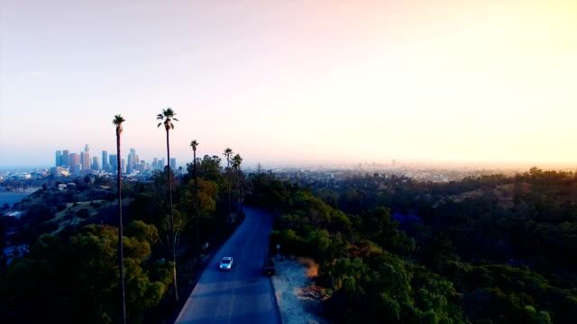 vidéos et rushes de vue aérienne de grands palmiers et le centre-ville de los angeles - californie du sud