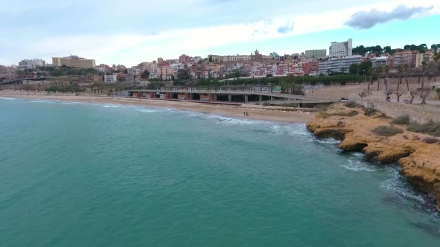 Aerial view of Tarragona beach in winter. Dog walking on the beach