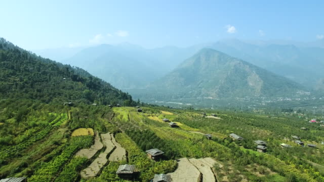 Aerial view of terraced field in Kullu valley, Himachal Pradesh, India video
