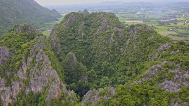 Aerial view of Tham Hup Pa Tat Cave or Amazing palm tree valley in Lan Sak, Uthai thani HUB PA TAD, Tourist Attraction in Uthai Thani, Thailand.The valley has to walk through the cave to see the trees look like primitive forest. vascular plants stock videos & royalty-free footage