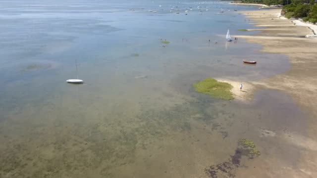 Aerial View Of The Basin Of Arcachon At Low Tide video