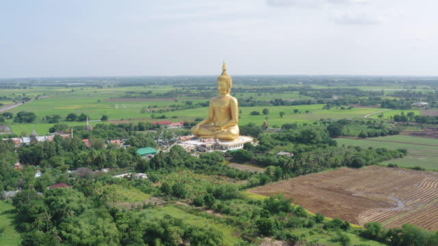 aerial view of the big golden buddha at wat muang with rice field and nice sky in ang thong, thailand. - wat video stock e b–roll