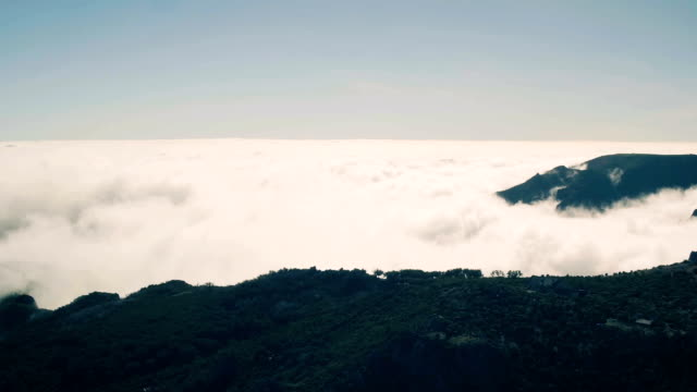 aerial view of the canyon and mountains with clouds - pianta sempreverde video stock e b–roll