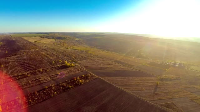 Aerial view of the field on sunest video