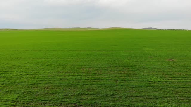 Aerial view of the Green Fields