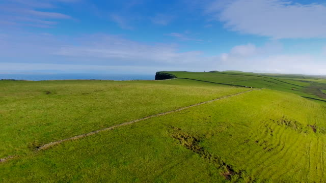 Aerial view of the green grasses of the CLiffs of Moher video