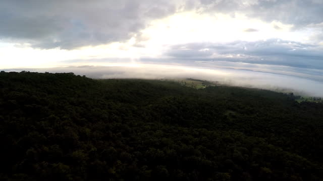 Aerial view of the mountain in the fog video