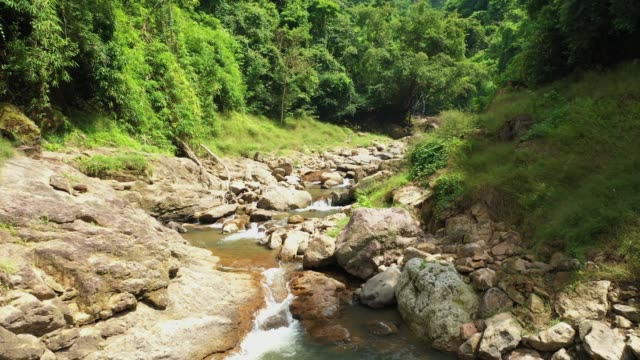 Aerial view of the mountain river flowing in the rainforest in natural environment Aerial view of the mountain river flowing in the rainforest in natural environment b roll stock videos & royalty-free footage
