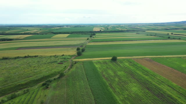 Aerial view of the plain of Vojvodina in Serbia